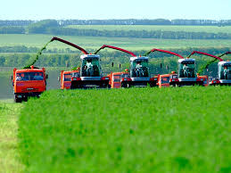 Concession agreement for the creation and operation of an object in the agricultural sector